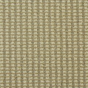Abbeys Road Timeless Rug, 100% Nylon 6,6 Fiber; STAINMASTER PetProtect